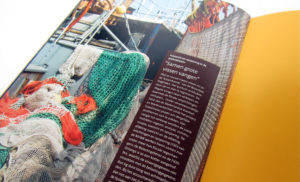 2 MAAL EE | Inspectieraad | jaarverslag